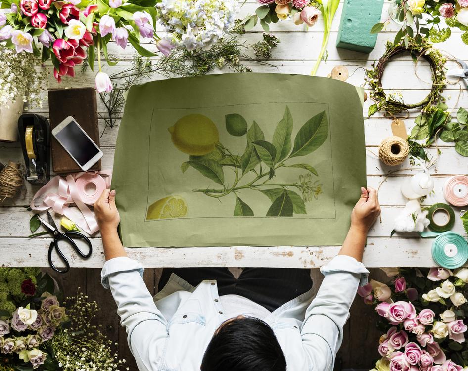 Plant,Flower,Floral Design