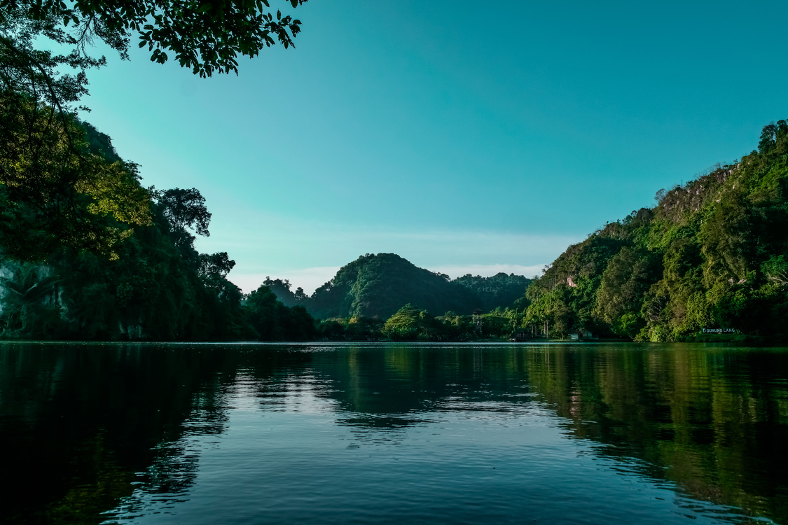 Valdivian Temperate Rain Forest,Wilderness,Tropics