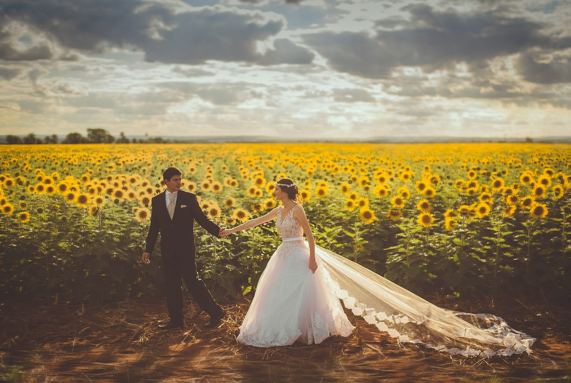 Ceremony,Flower,Sunflower