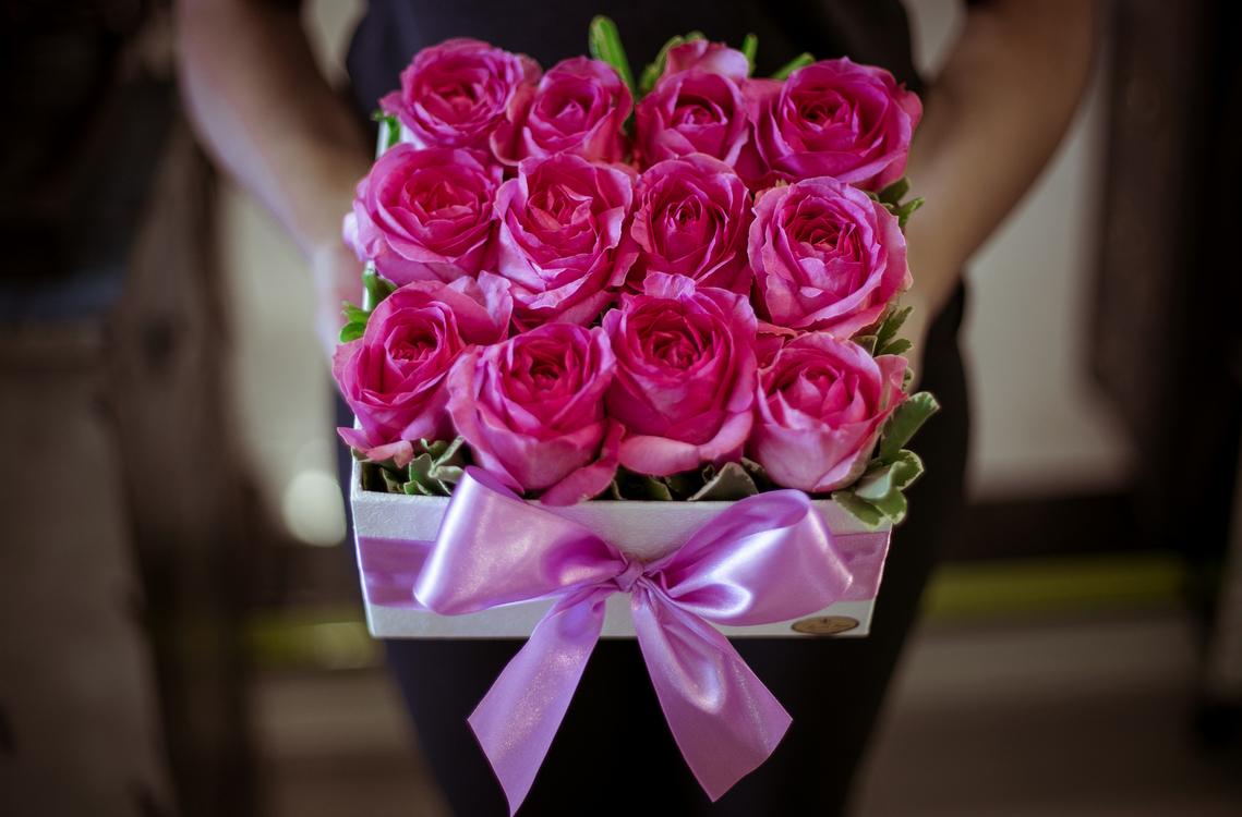 Pink,Ceremony,Plant