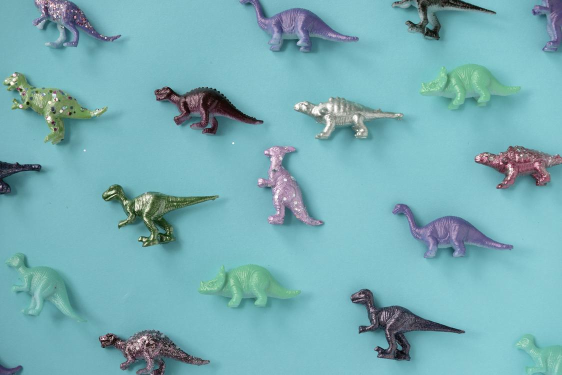 Marine Biology,Fauna,Organism