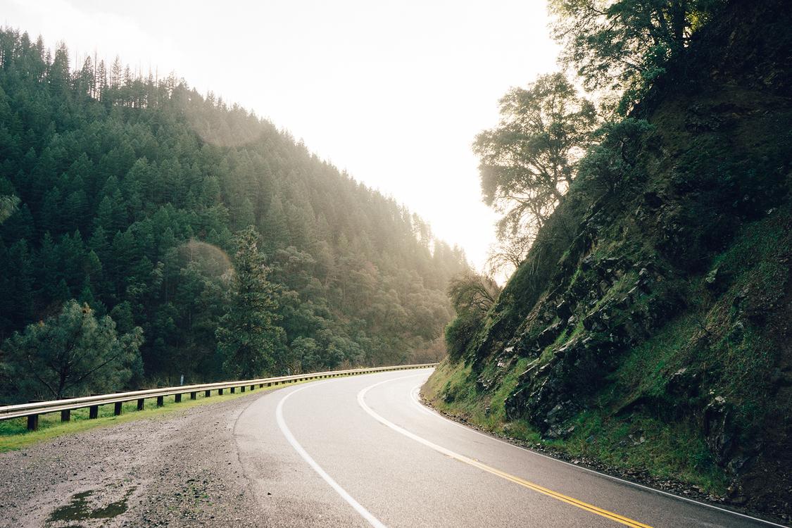 Asphalt,Forest,Road Trip