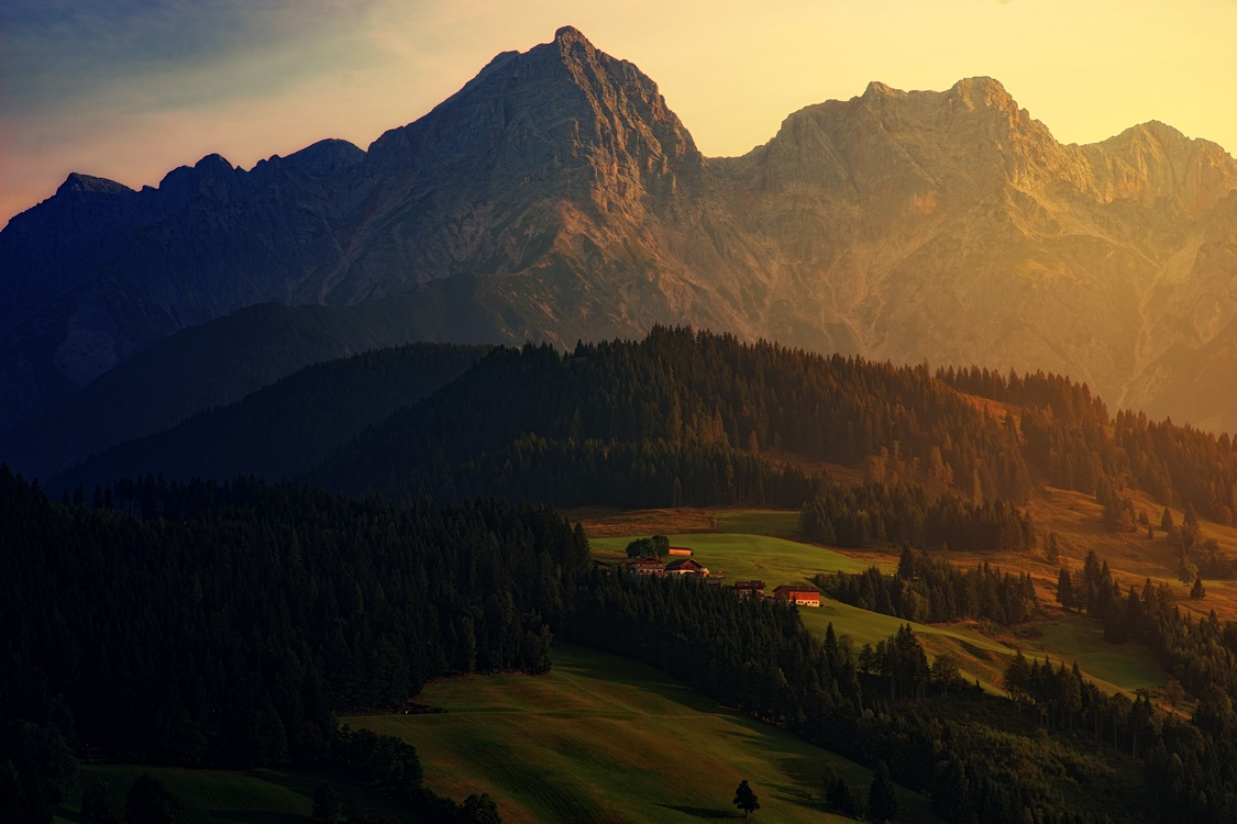 Atmosphere,Meadow,Wilderness