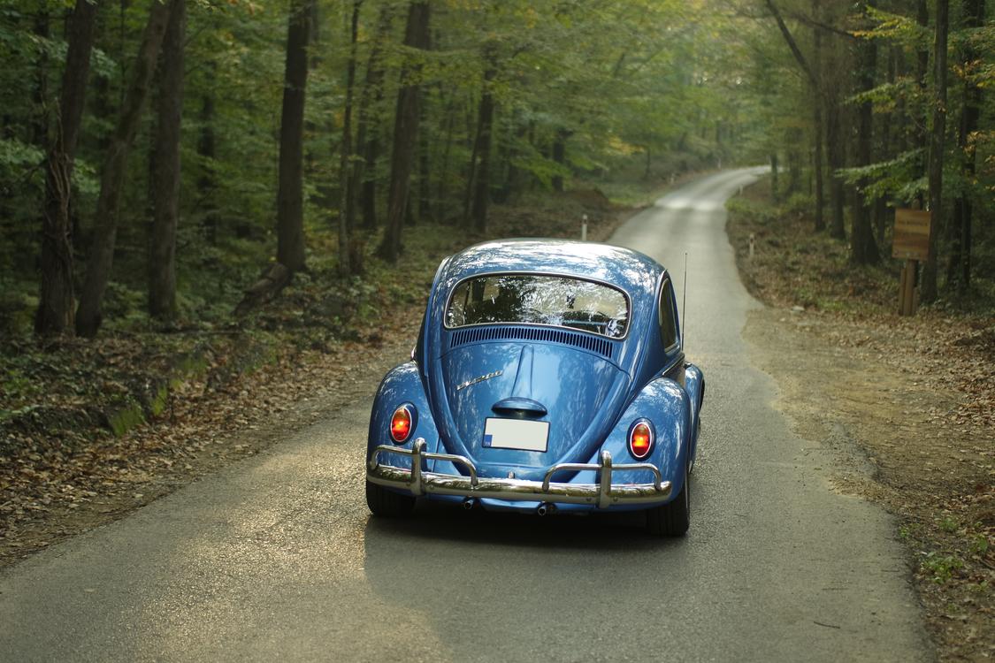 Classic,Landscape,World Rally Championship