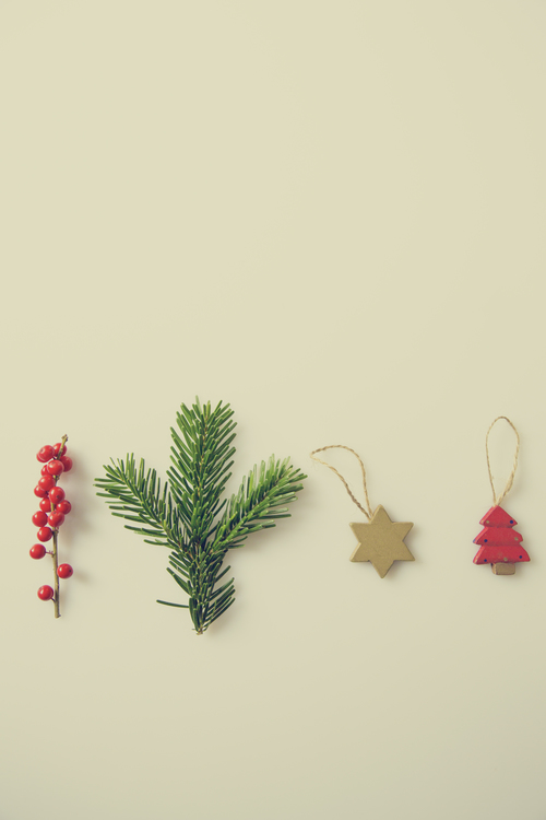 Christmas Ornament,Leaf,Tree