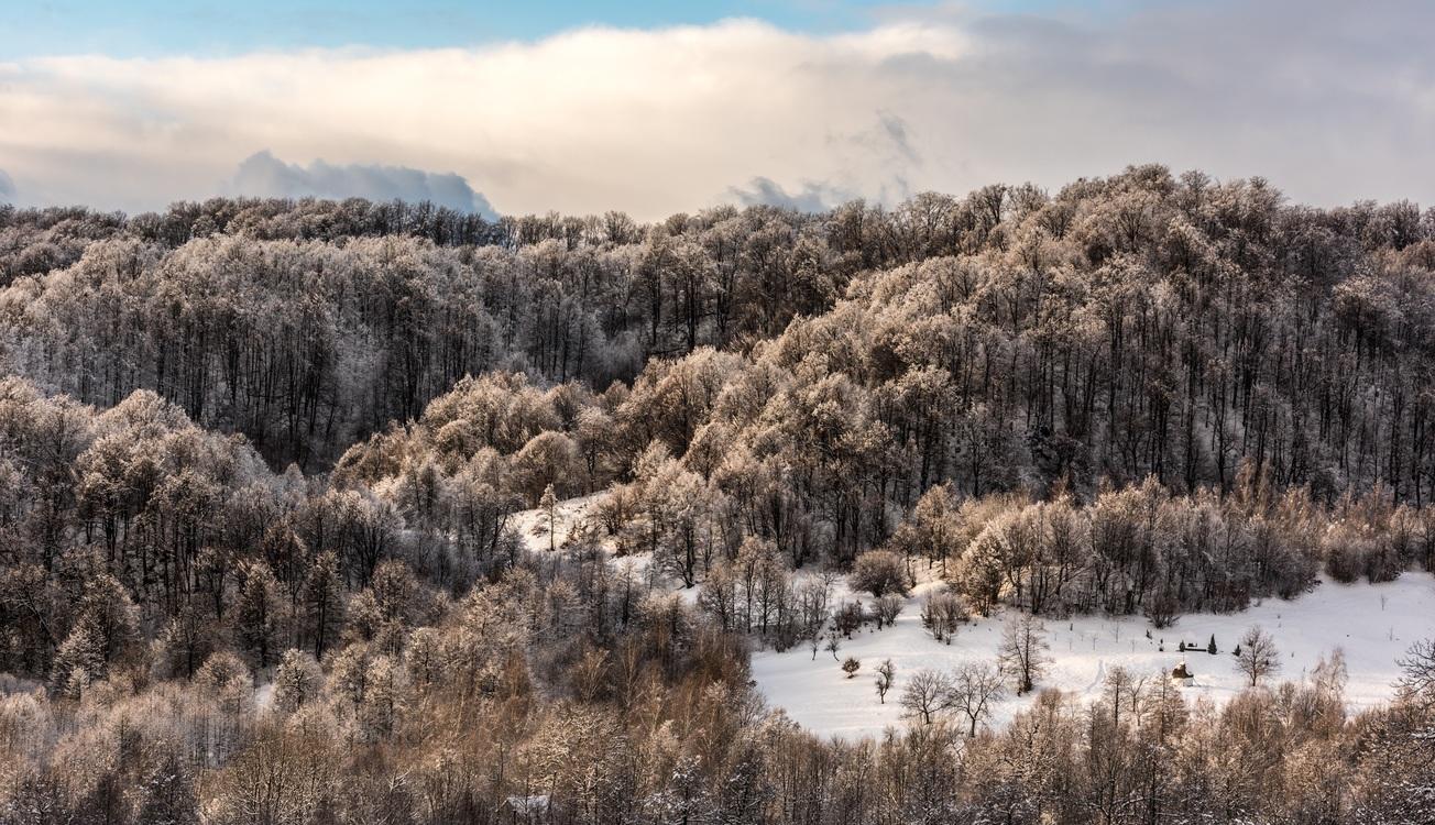 Mountain,Grass Family,Mountain Range