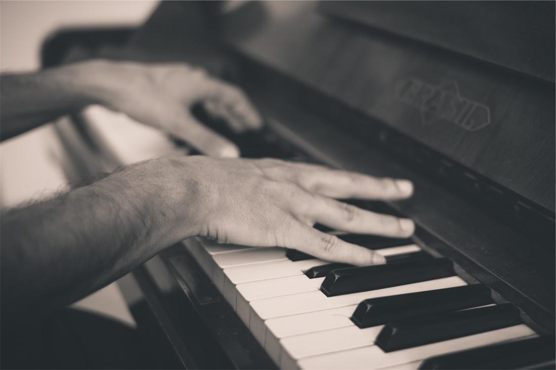 Finger,Digital Piano,Musical Instrument