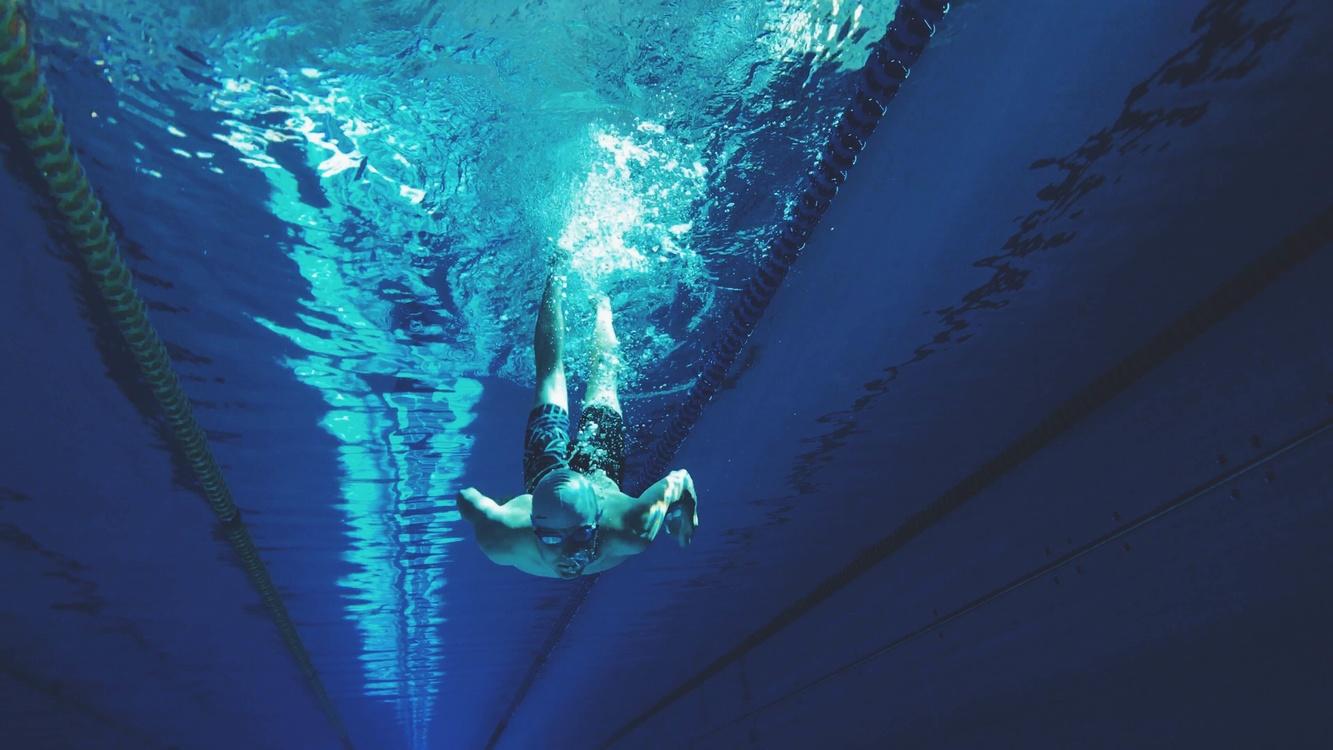 Underwater,Recreation,Marine Biology