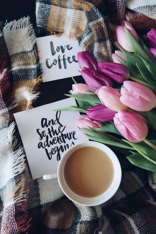 Coffee Cup,Flower,Drinkware