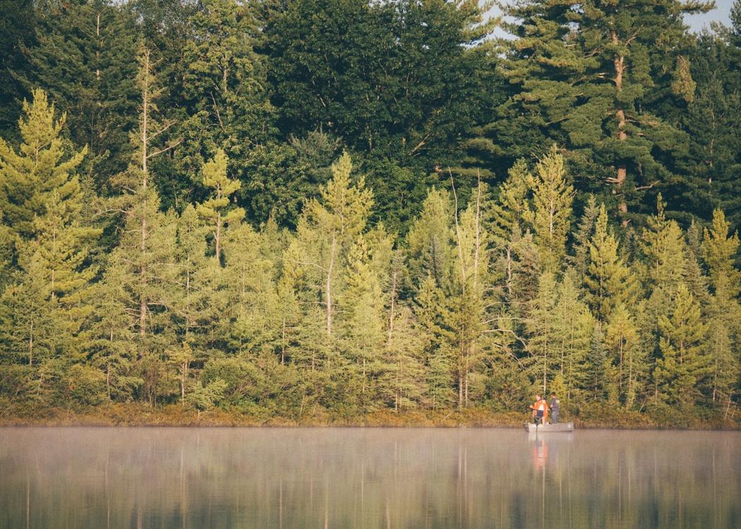 Wilderness,Loch,Lacustrine Plain