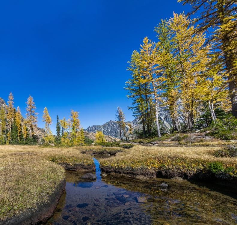 Mountain,Creek,Wilderness