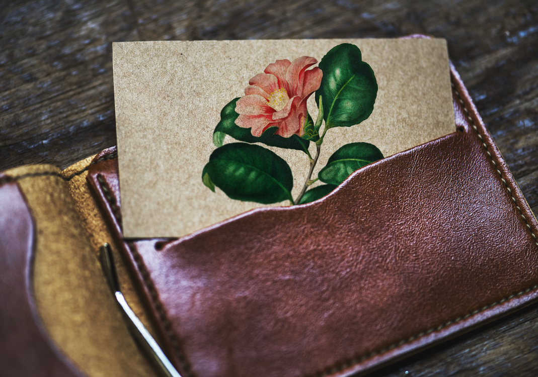 Flower,Paper,Business Cards