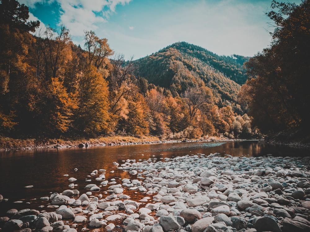 Wilderness,Loch,Autumn