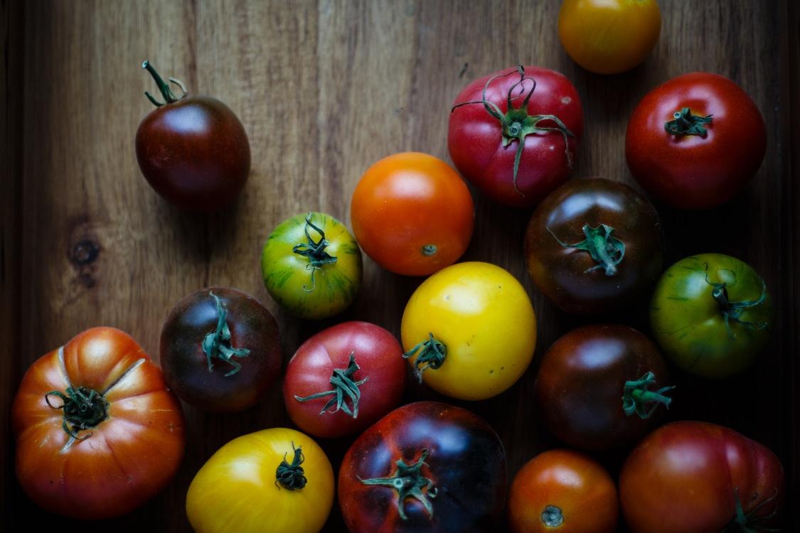 Tomato,Bush Tomato,Food