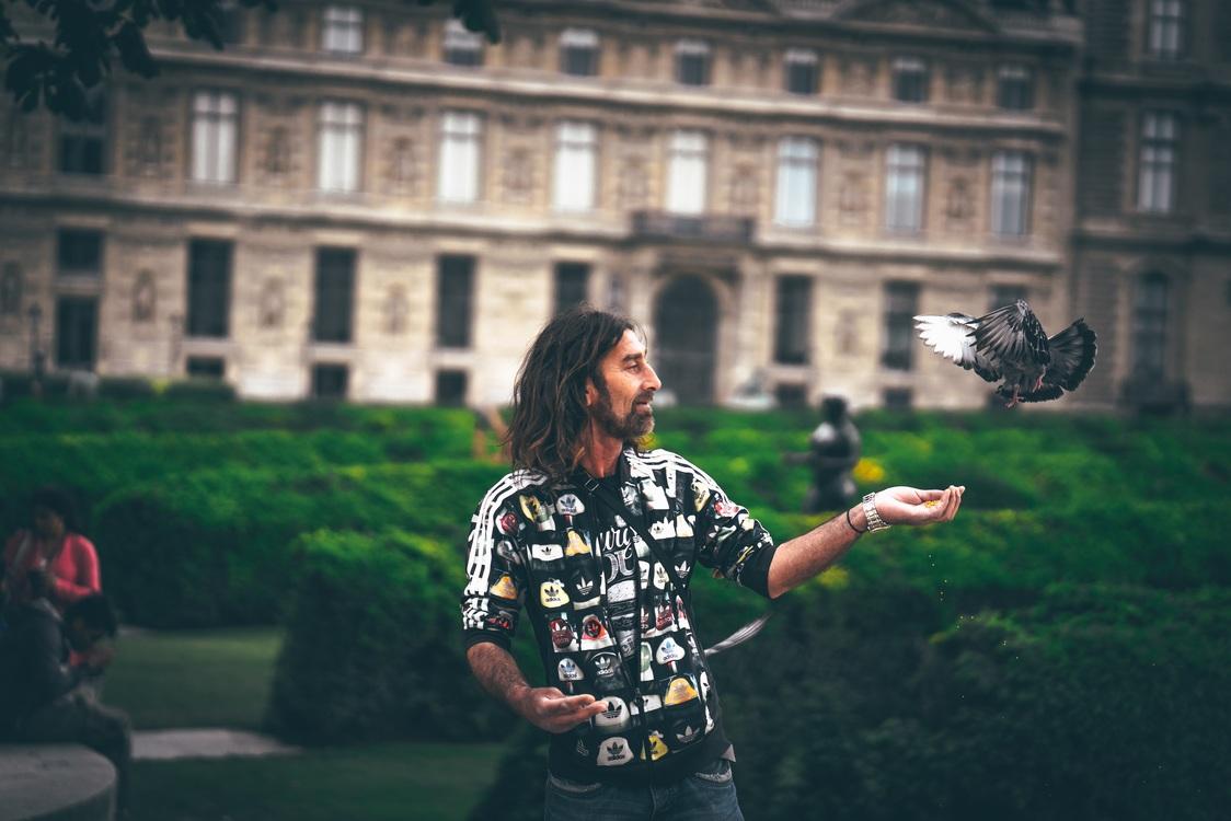 Photography,Tree,Recreation