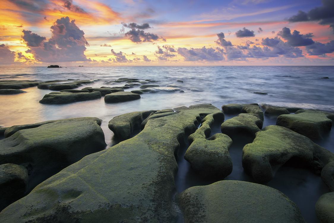 Evening,Horizon,Wave