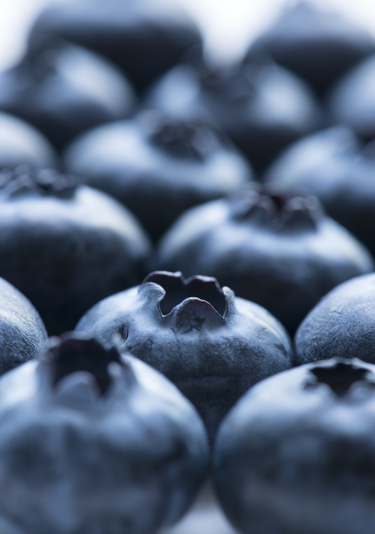Blue,Superfood,Close Up