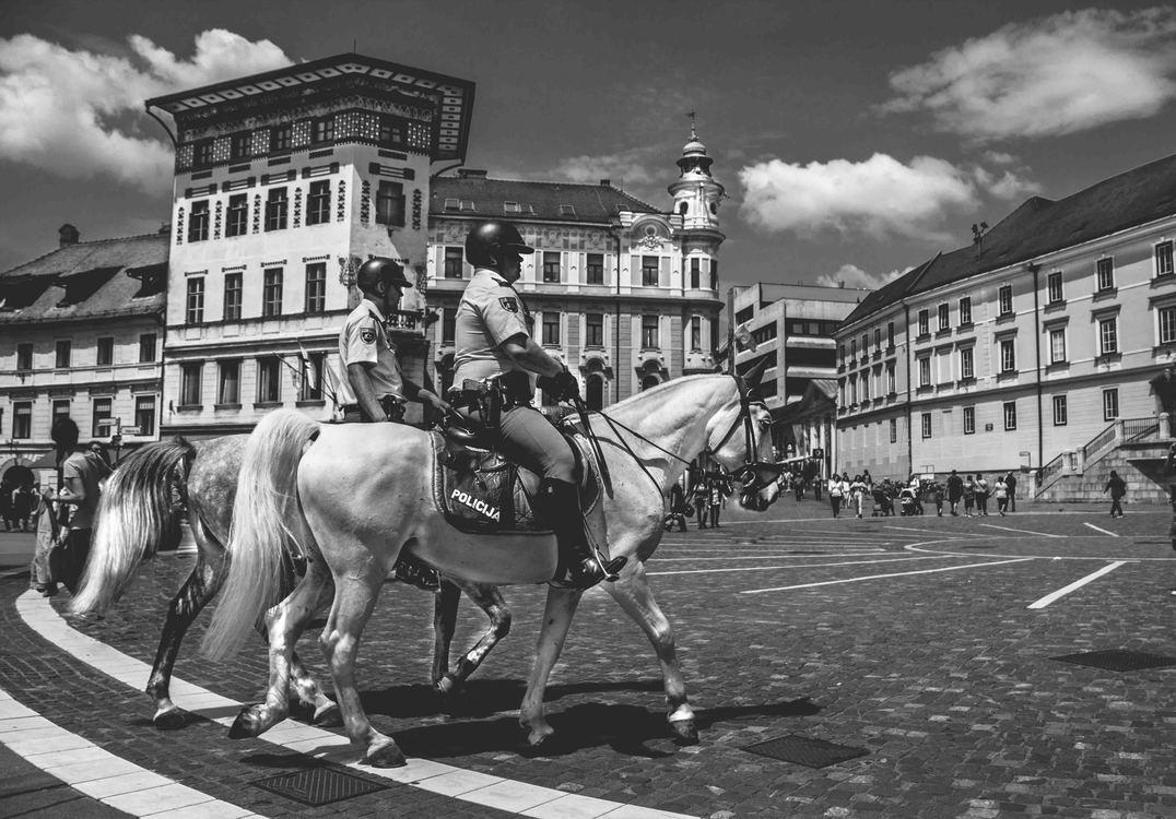 City,Horse,Jockey