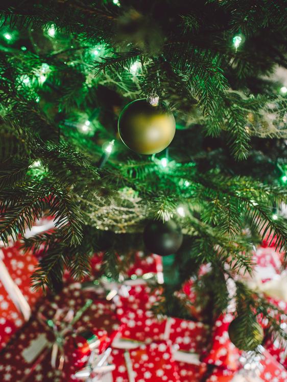 Evergreen,Fir,Christmas Decoration