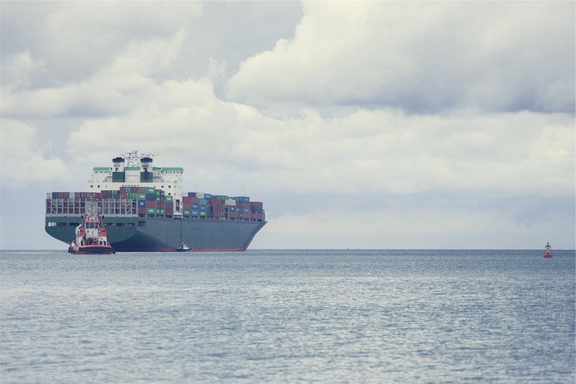 Motor Ship,Watercraft,Livestock Carrier