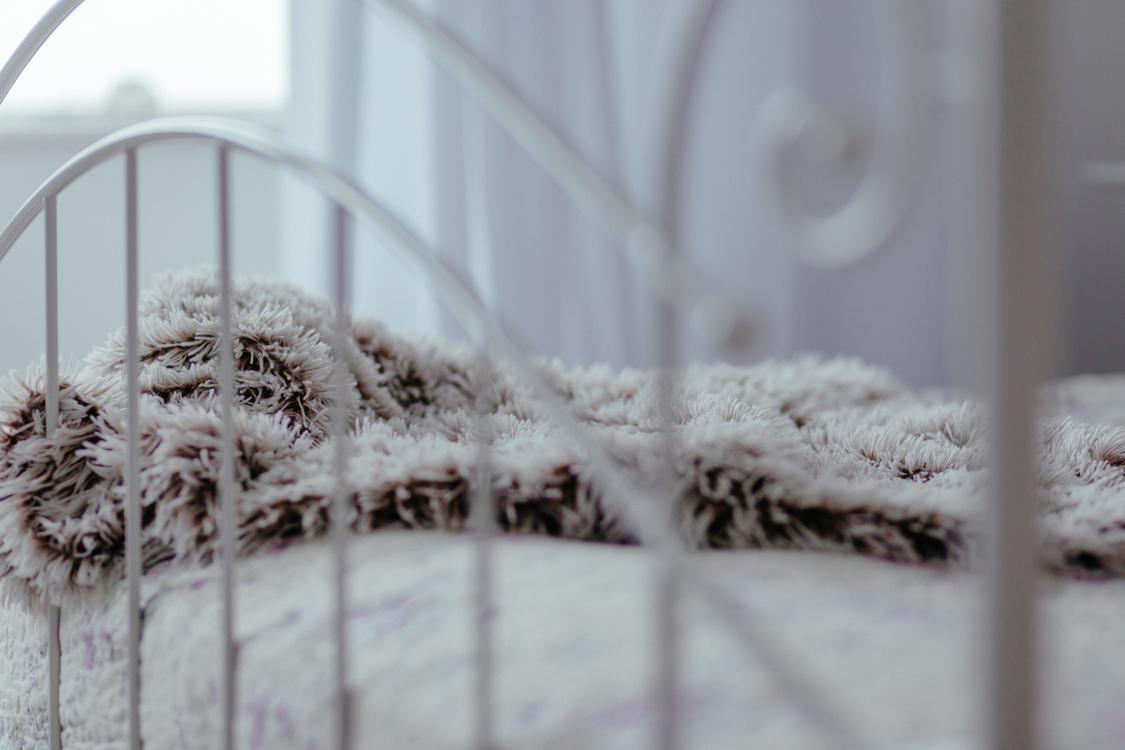 Winter,Frost,Freezing