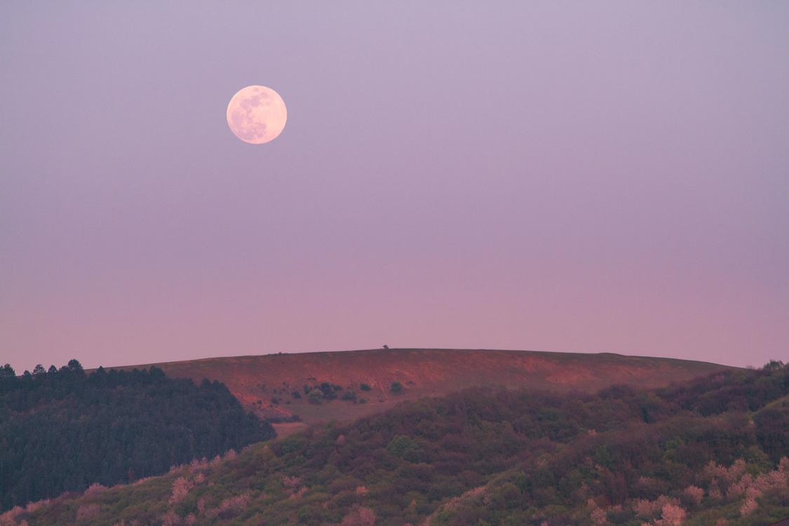 Listen to new moon audiobooks online free.