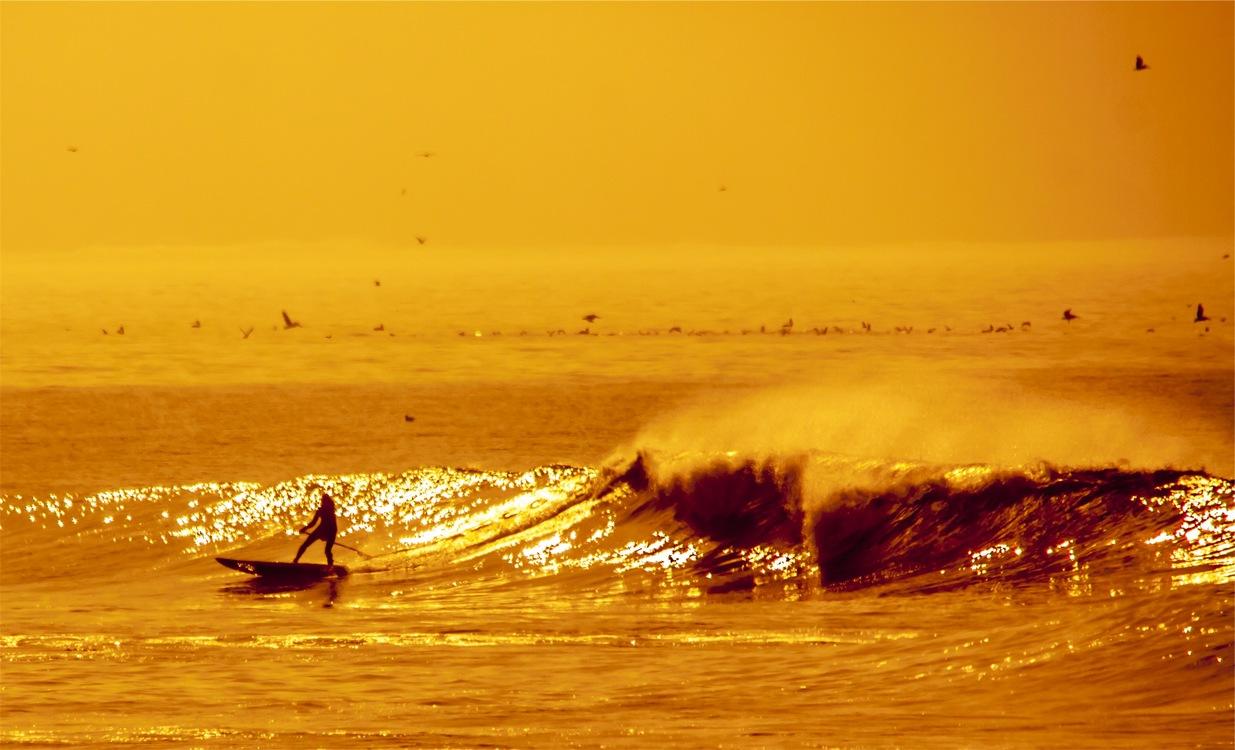 Law firm Surfing Login Password CC0 - Wind Wave,Evening,Horizon CC0