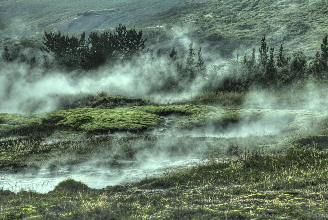 Mount Scenery,Nature Reserve,Wetland