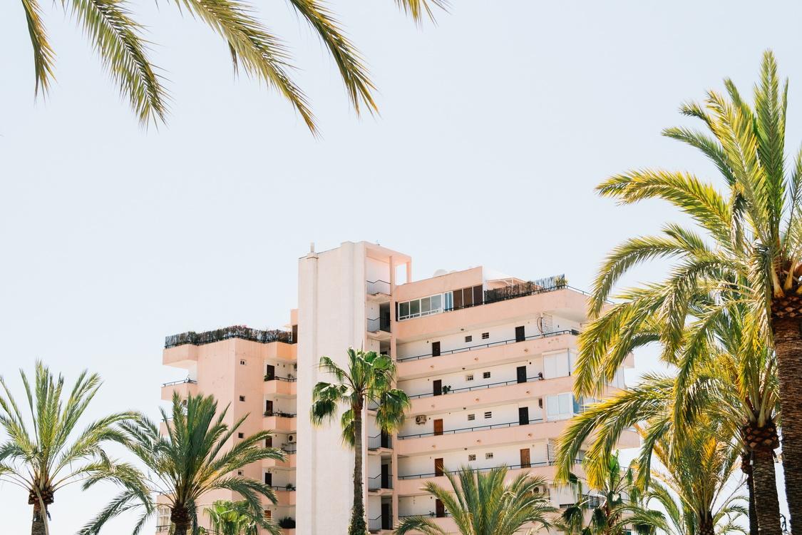Building,Plant,Apartment