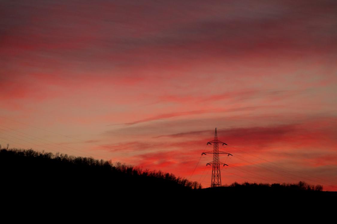 Tree,Atmosphere,Evening