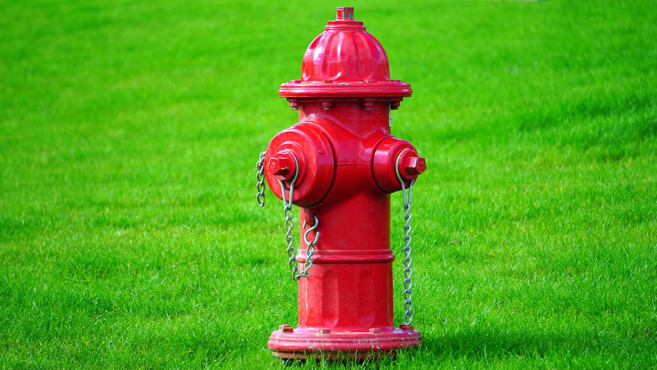 Fire Hydrant,Grass,Lawn