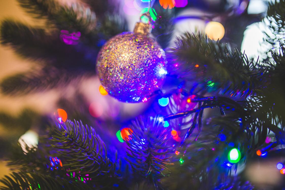 Fir,Christmas Decoration,Christmas Ornament