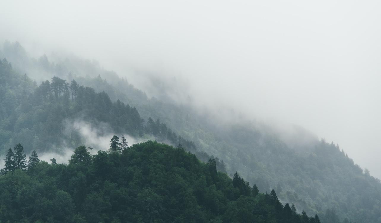 National Park,Atmosphere,Phenomenon