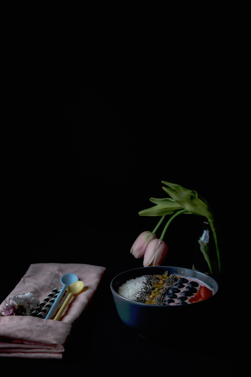 Plant,Darkness,Houseplant