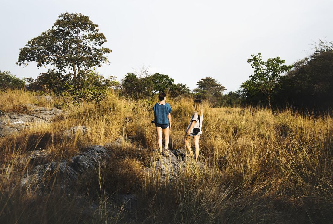 Walking,Wilderness,Plant