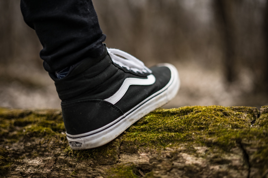 Photography,Tree,Outdoor Shoe