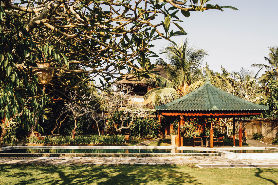 Plant,Tourist Attraction,Estate