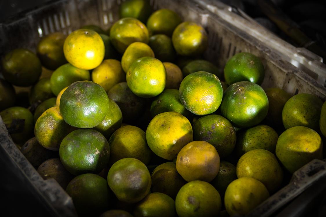 Bitter Orange,Natural Foods,Lemon Lime