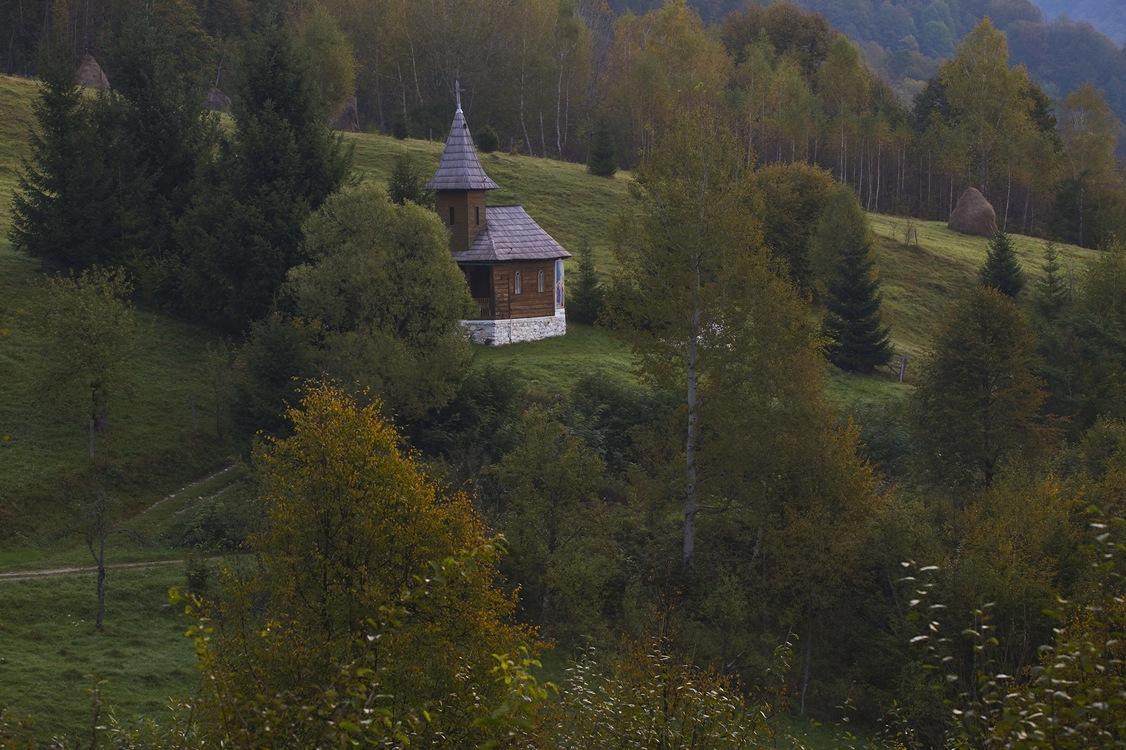 Farmhouse,Meadow,Wilderness