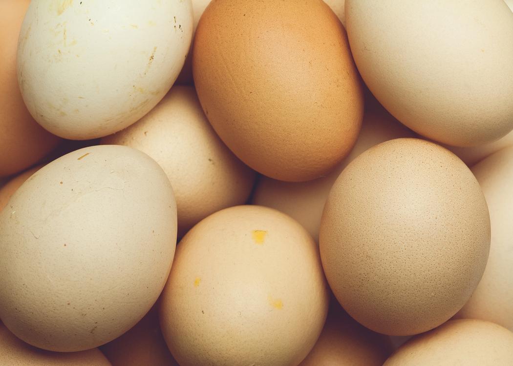 Food,Animal Source Foods,Egg