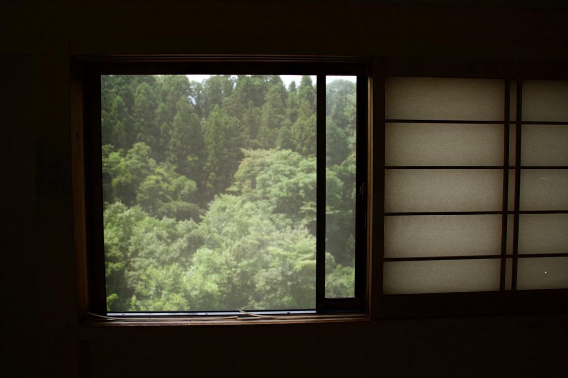 Sash Window,Door,Darkness