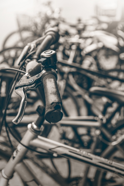 Bicycle,Monochrome Photography,Photography