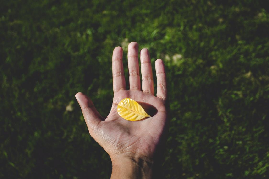Thumb,Hand Model,Yellow