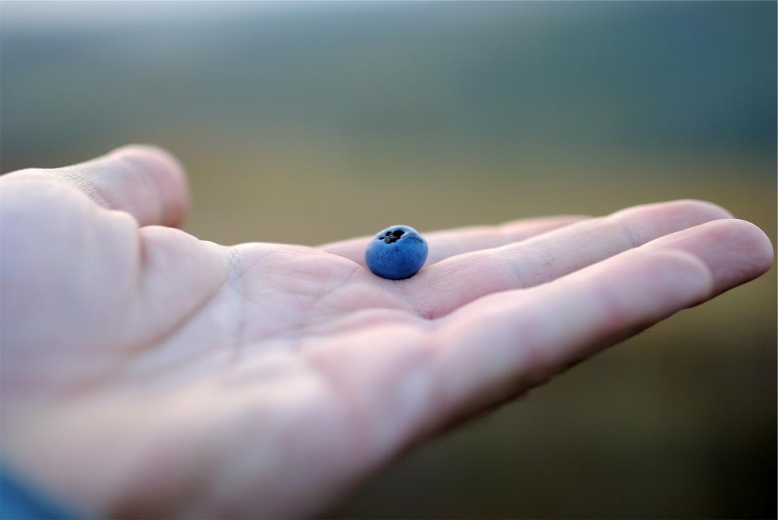 Blue,Close Up,Thumb