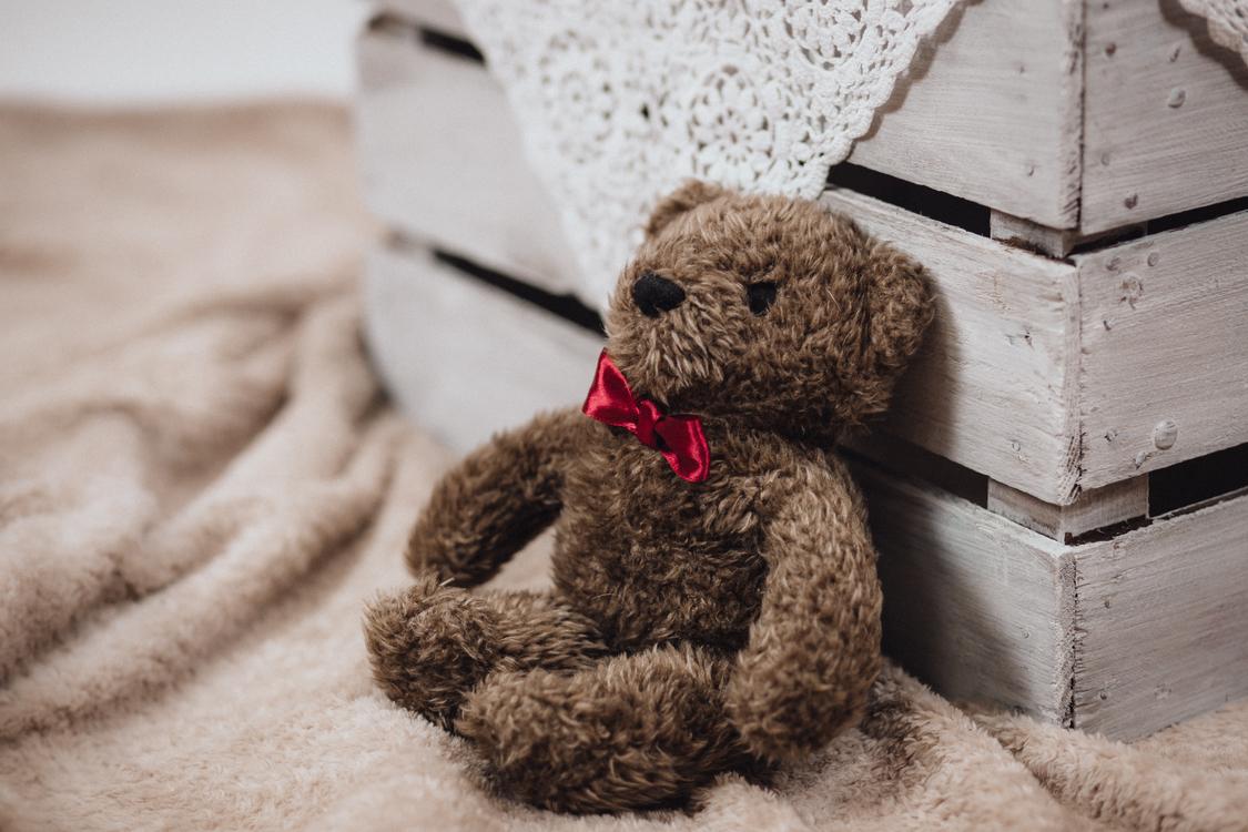 Teddy bear museum Stuffed Animals & Cuddly Toys