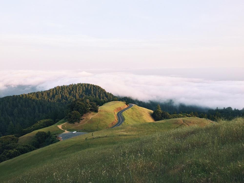 Meadow,Terrain,Mount Scenery