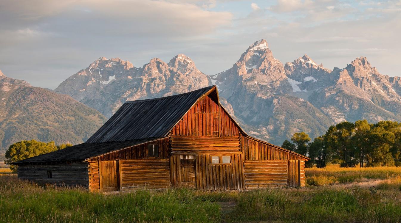 Farmhouse,Wilderness,House