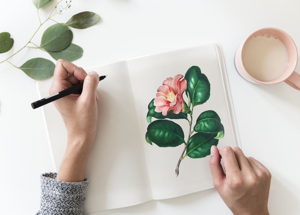 Creativity Art Search Engine Optimization Business Lifestyle