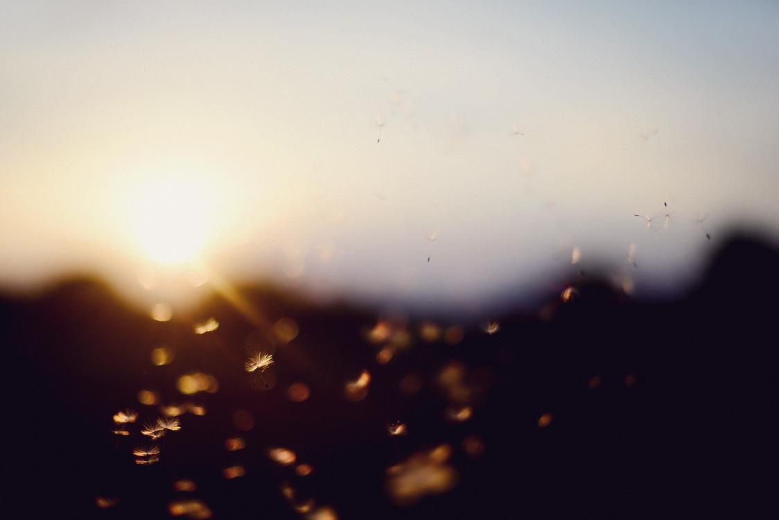 Atmosphere,Evening,Dusk