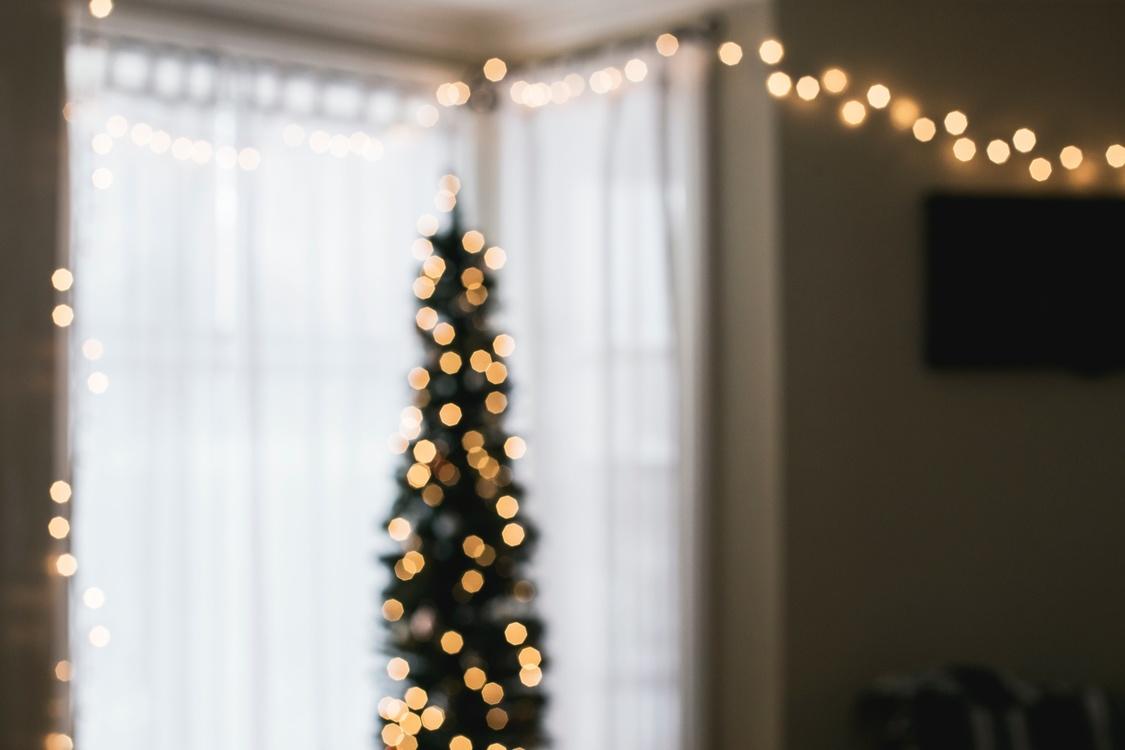 Ceremony,Christmas,Christmas Decoration